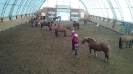 2016 Horse Day_6