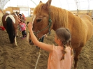 2016 Horse Day_13